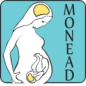 MONEADICONweb